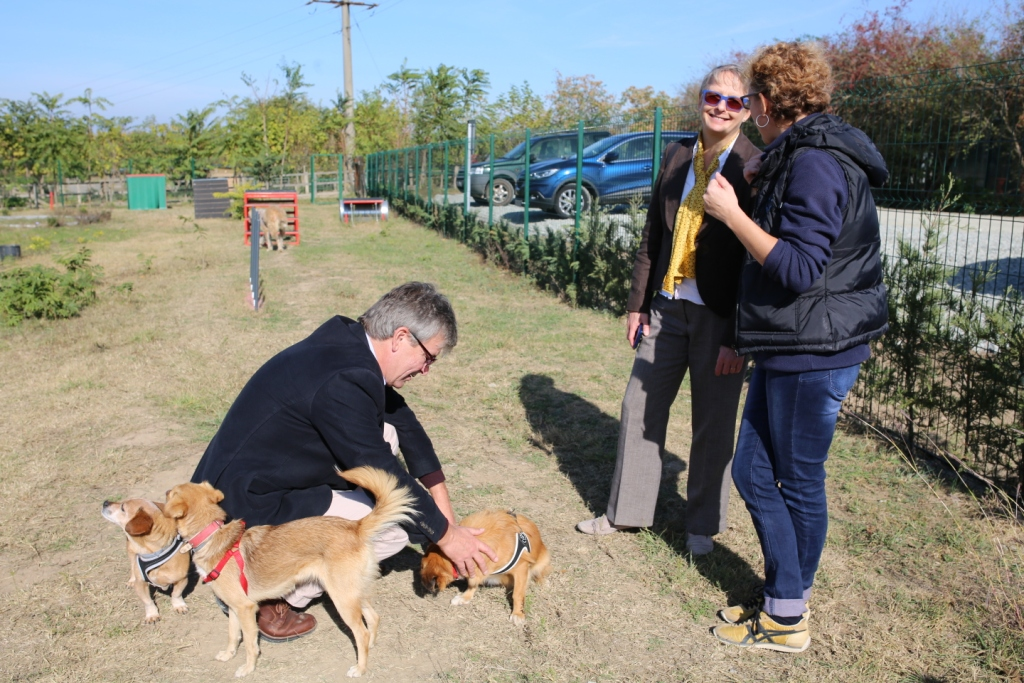 Sara and Dogs Trust delegation