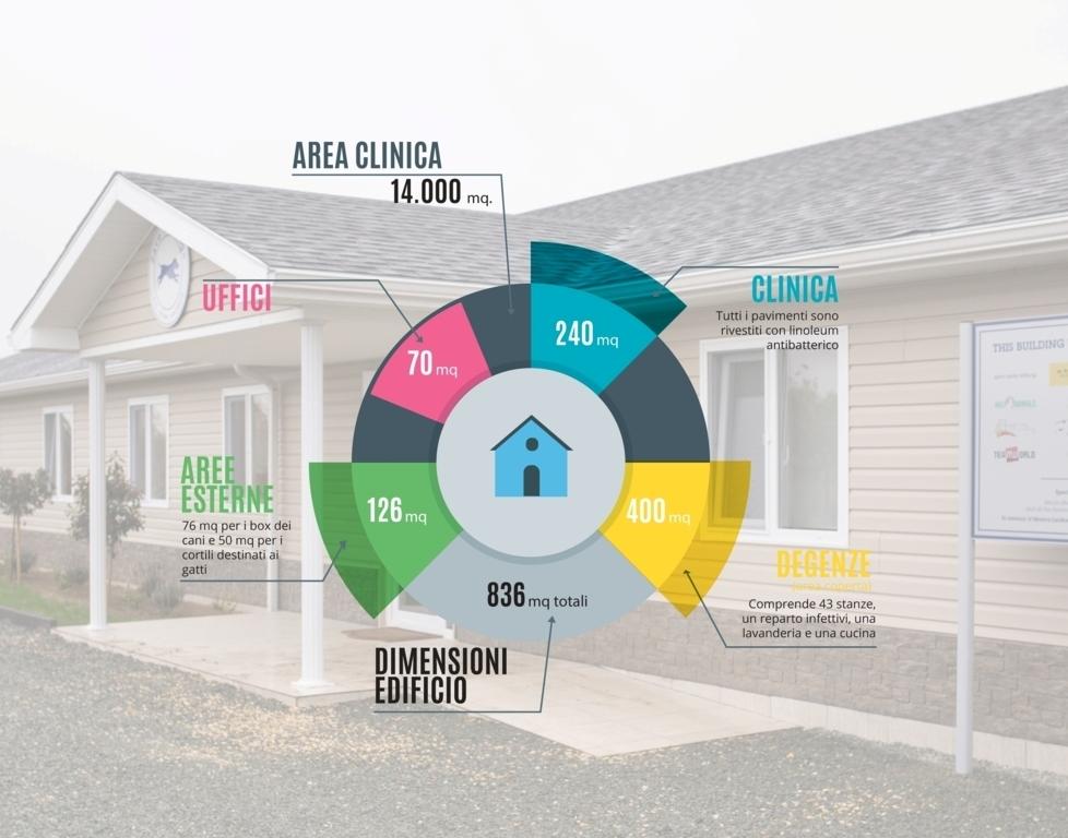 Grafico 2 Brochure clinica copia