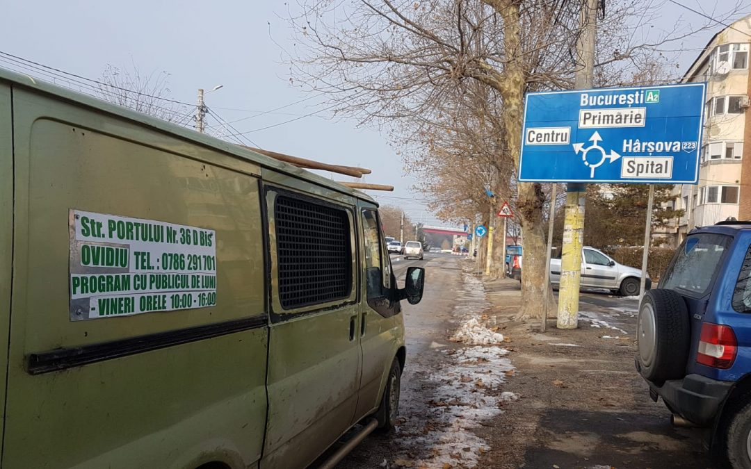 """Cleaning"" Cernavoda roads before Christmas: tens of dogs caught"