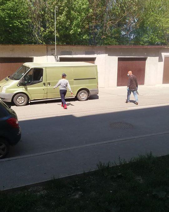 Dog catchers back in Cernavoda