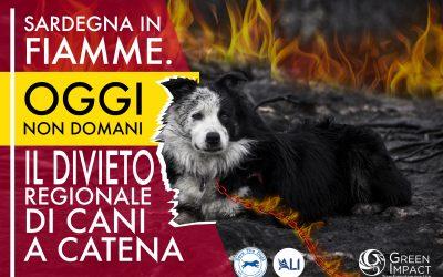 Sardegna in fiamme, leggi il comunicato stampa